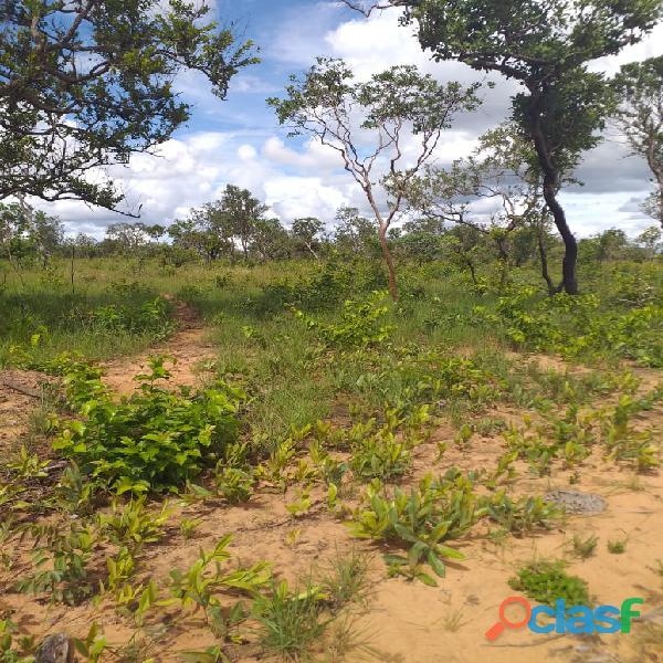 1500 Alqs Potencial Pra Soja Solo Misto Plana Lagoa do TO 3