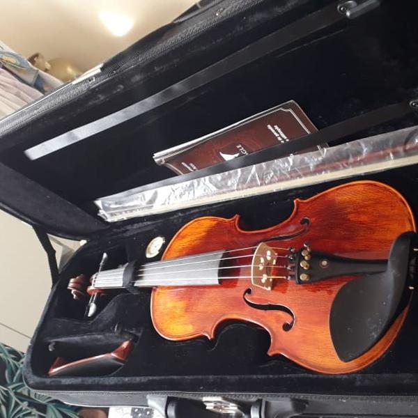 Violino eagle vk544 4/4 envelhecido com case, breu, arco e