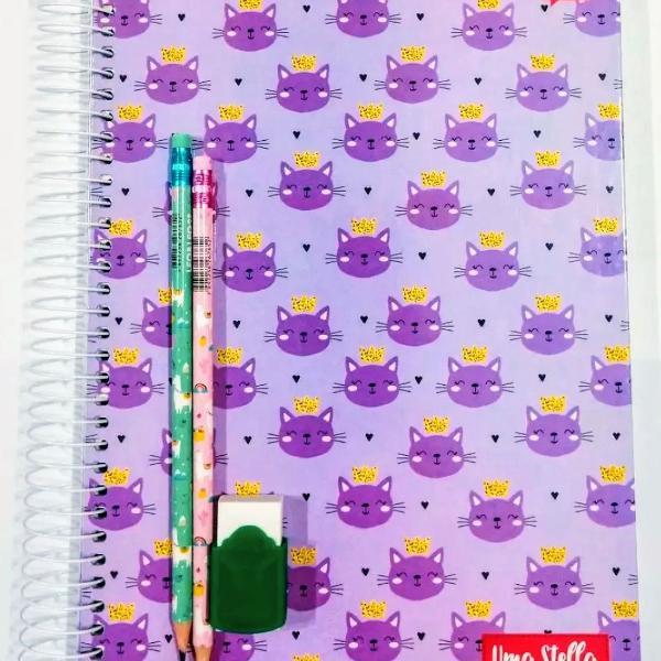 Caderno Gatinhos 10 Matérias Jandaia + 2 Lápis E 1