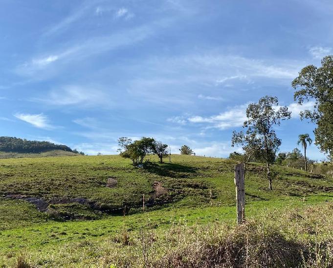 Sítio 25,0 hectares - morro da figueira - santo antônio da