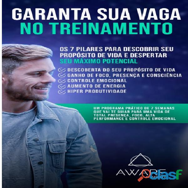 Aware Academy | Os 7 Pilares Para Despertar Seu Máximo Potencial