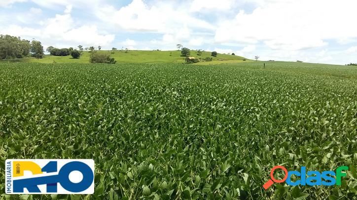 Fazenda a venda área de 60 alqueires município de reserva