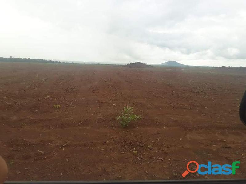 320 Alqs Pronto pra Plantar Beira Rodovia Silvanópolis TO 2