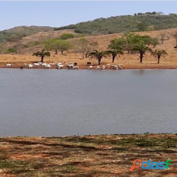 70 Alqs Rica em Água Toda Pronta Ótima Logística Goiás GO