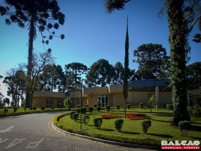 Jazigo cemiterio jardim da saudade ii pinhais