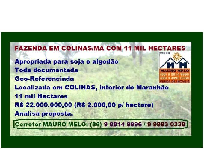 Fazenda com 11.000 hectares em colinas (ma) ===