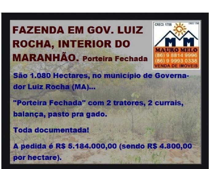 Fazenda em gov. luiz rocha, interior do maranhão ===