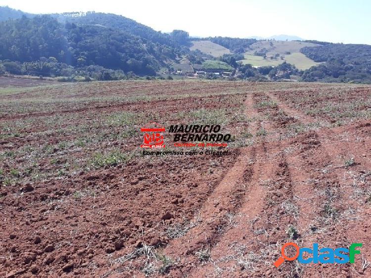 Fazenda produtiva em atibaia;