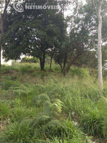 Terreno à venda em vila castela, nova lima cod:569361