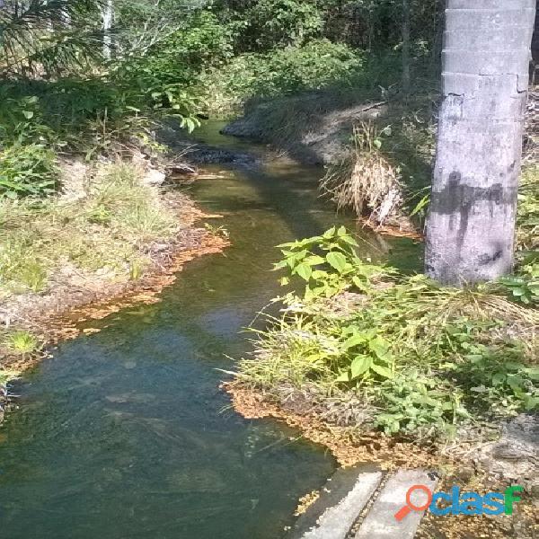 532 Alqs da Pivô Beira Rodovia Região Chuva da Loteamento Goiatins TO 5