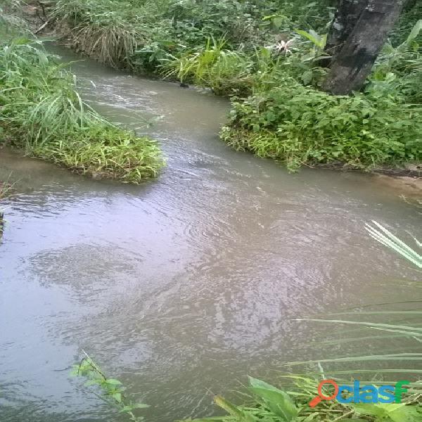 532 Alqs da Pivô Beira Rodovia Região Chuva da Loteamento Goiatins TO 4