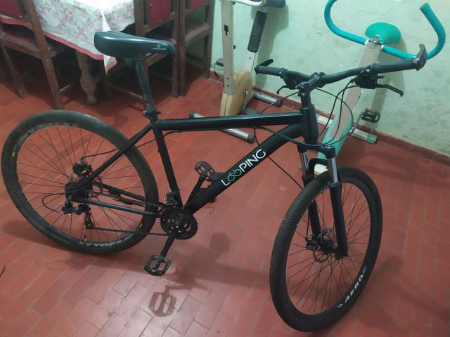 Bicicleta looping aro 29