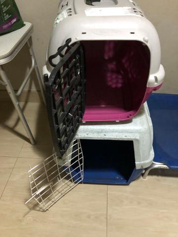 Caixa transporte caes e gato