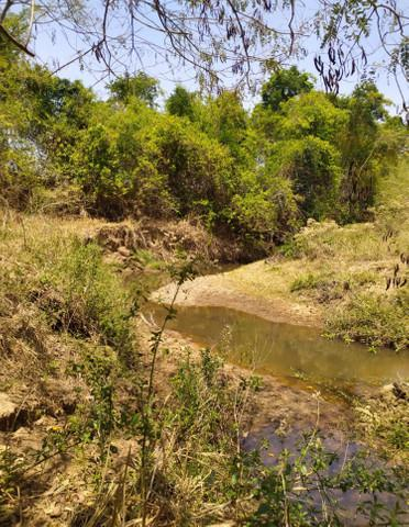 Chácaras em varjão 65km de goiânia