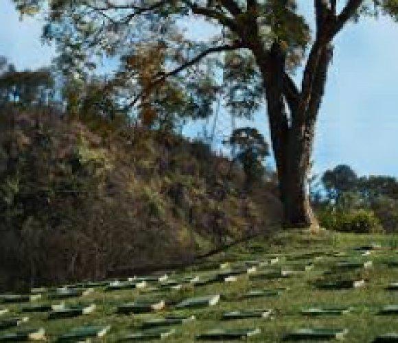 Jazigo cemitério parque da colina
