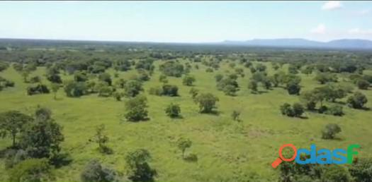 280 alqs dupla aptidão plana cultura 2 rios argila 40% formosa go