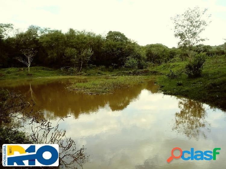 Sitio a venda com área de 32,4 alqueires região de jataizinho pr.