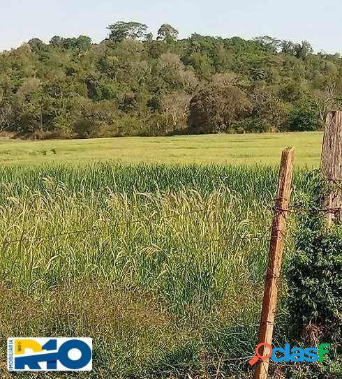 Sitio a Venda com área de 32,4 Alqueires Região de jataizinho PR. 3