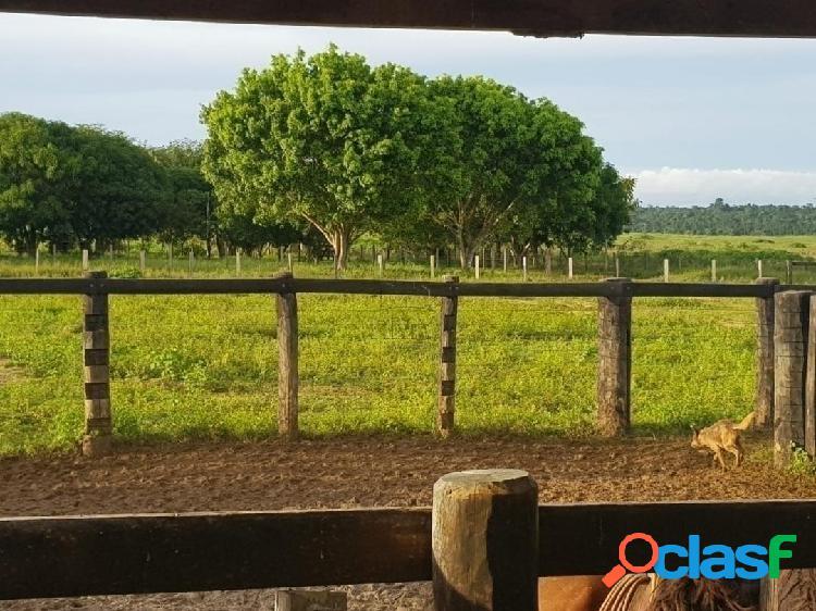 Fazenda A Venda Em Nova Santa Helena - Mato Grosso