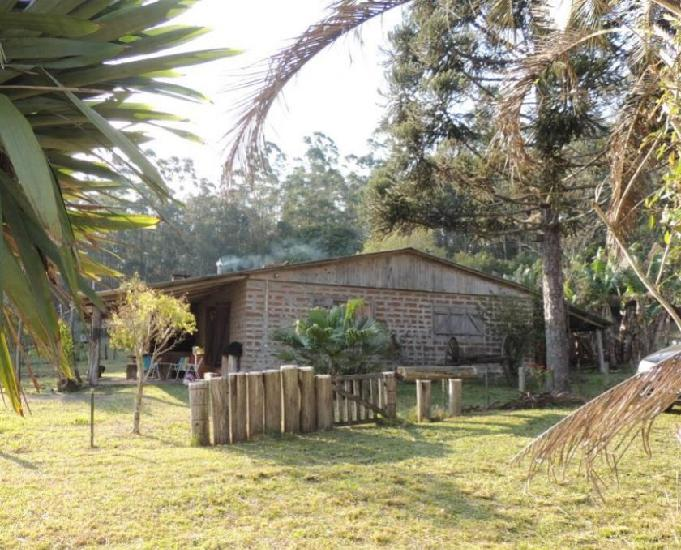 Sítio 2,5 hectares - maracanã - glorinha - rs