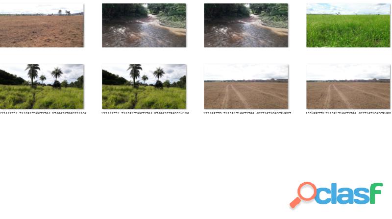 1.589 alqs dupla aptidão rios nascentes parte formada lizarda to