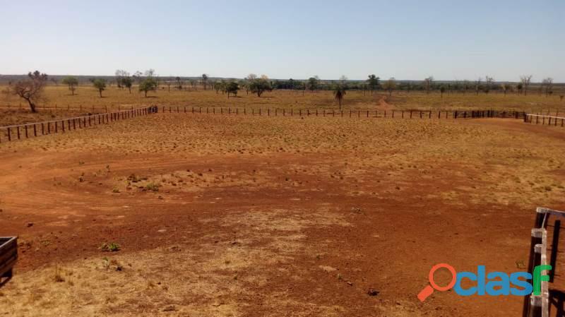 370 alqs plana planta 45% argila cultura montada porangatu go
