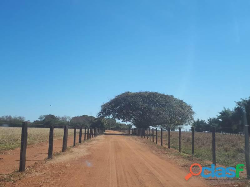 265 Alqs Plana Rio da Agricultura Bem Montada Sta Fé GO 1