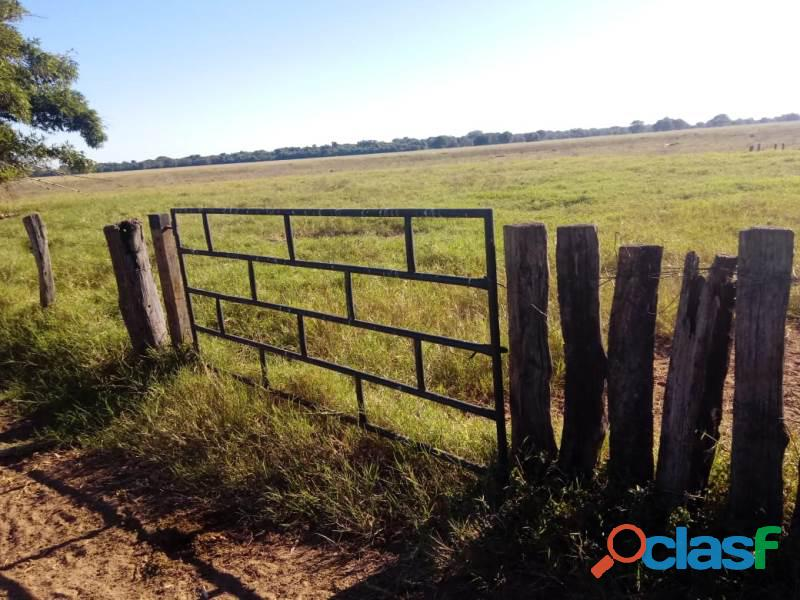 265 Alqs Plana Rio da Agricultura Bem Montada Sta Fé GO 3