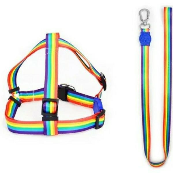 Peitoral + guia para cães filhotes porte mini arco-íris -