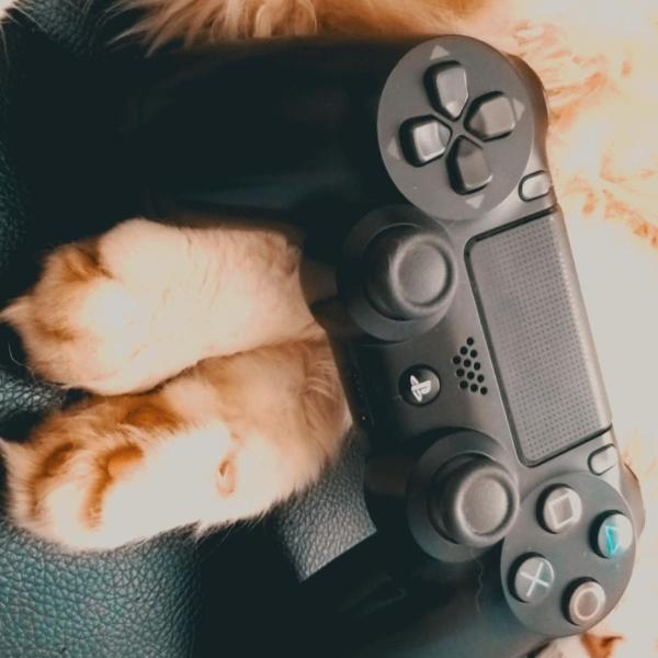 Playstation 4 com 2 controles originais