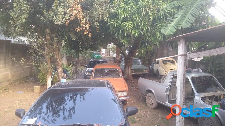 Terreno - venda - são paulo - sp - vila curuçá