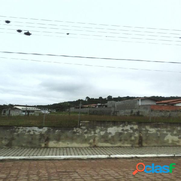 Terreno - venda - presidente getulio - sc - pinheiro