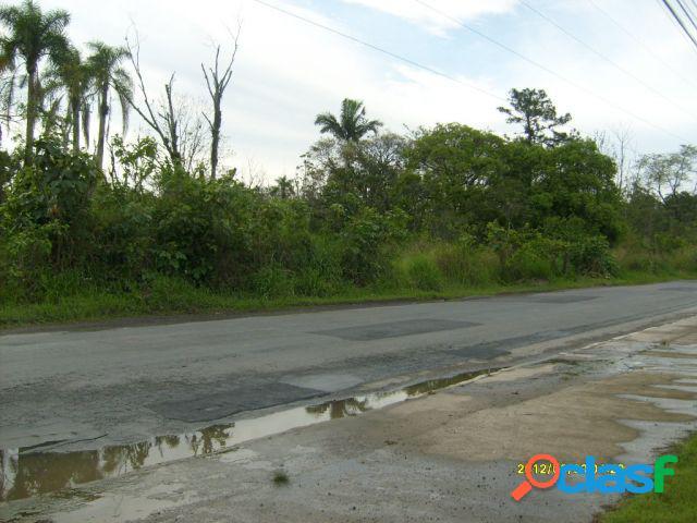 Terreno - Venda - Itajaí - SC - Salseiros