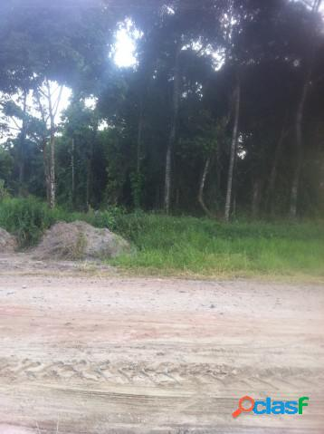 Terreno - venda - itapoa - sc - mariluz nascimento