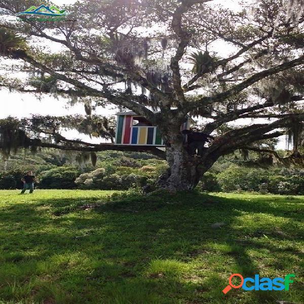 Velleda oferece 3 hectares, somente para trocar por apto em porto alegre