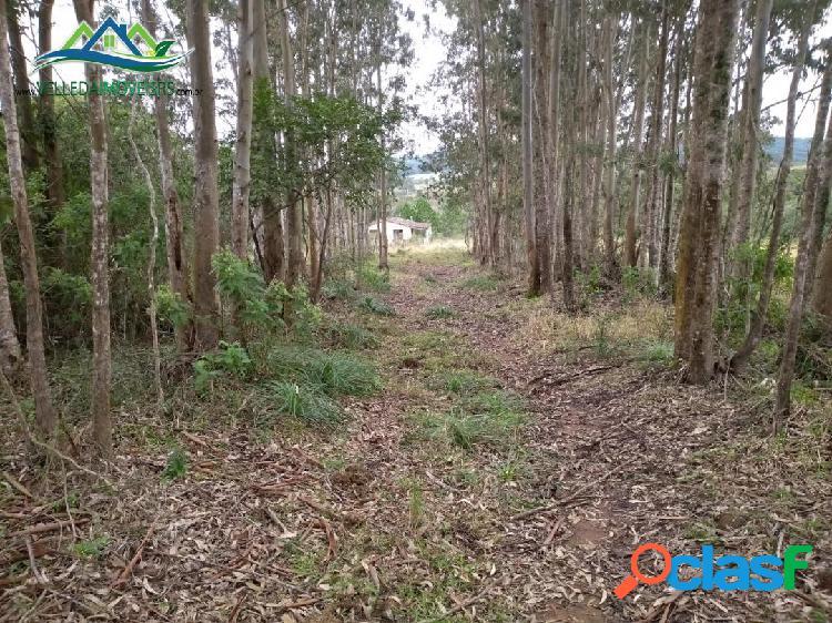 Velleda oferece 3 hectares, somente para trocar por apto em Porto Alegre 1