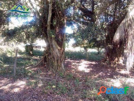 Velleda oferece 3 hectares, somente para trocar por apto em Porto Alegre 3