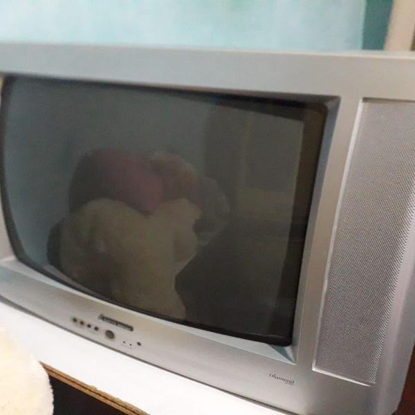 Tv tubo mitsubishi