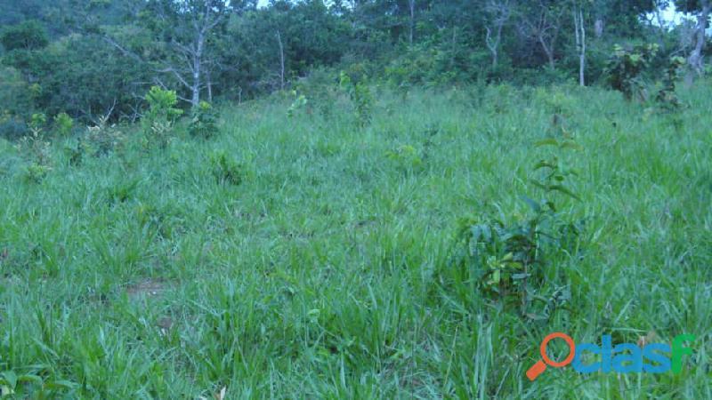 11 Alqs Formada Rio Córrego Pirenópolis GO 3