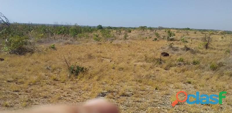 124 Alqs Arrendar Pra Soja Vale do Araguaia TO 1
