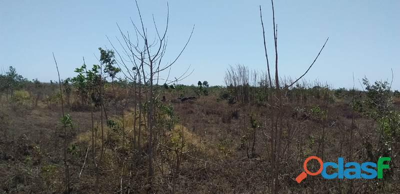 124 Alqs Arrendar Pra Soja Vale do Araguaia TO 7