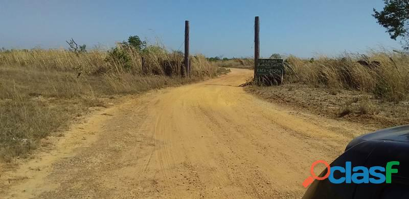 124 Alqs Arrendar Pra Soja Vale do Araguaia TO 12