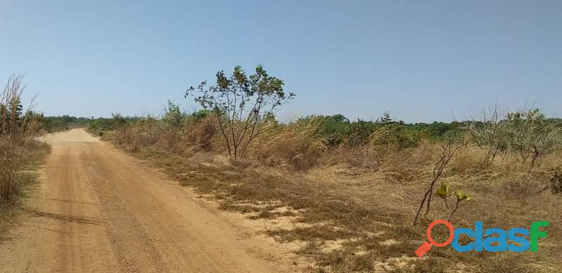 124 Alqs Arrendar Pra Soja Vale do Araguaia TO 13