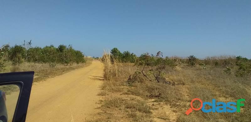124 Alqs Arrendar Pra Soja Vale do Araguaia TO 14