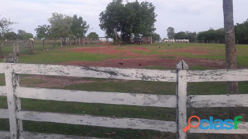 121 Alqs Dupla Aptidão Abaixo do Valor Córrego Porangatu GO