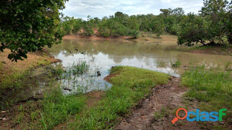 121 Alqs Dupla Aptidão Abaixo do Valor Córrego Porangatu GO 1