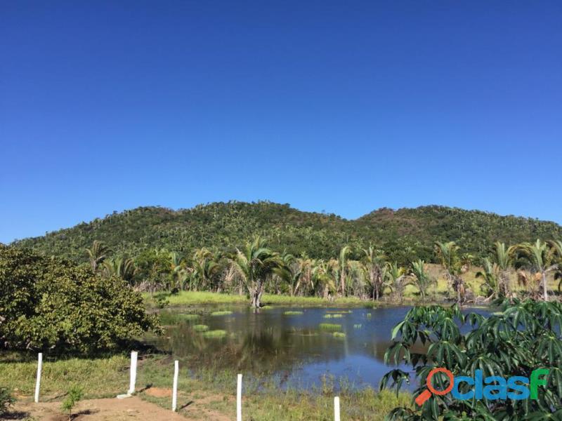 220 Alqs Formada Córrego Montada Boa Logística Jussara GO 1