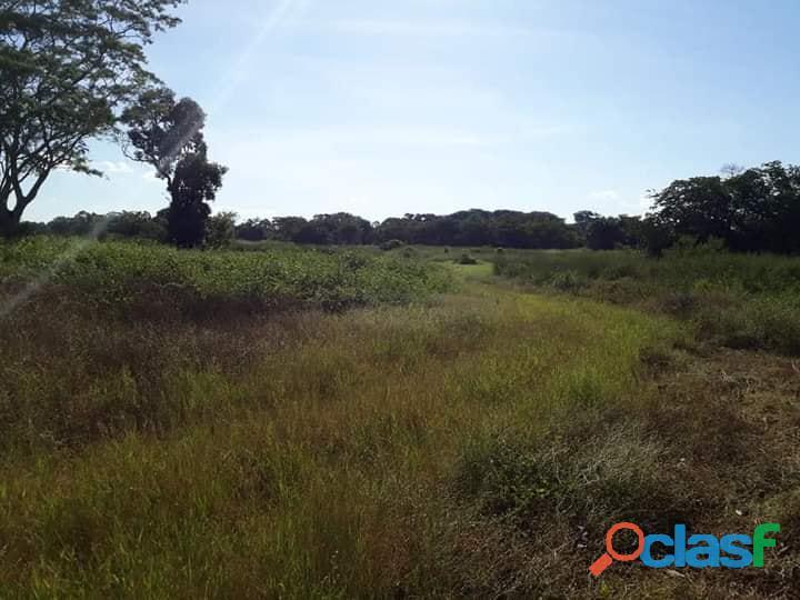 1.380 alqs bacia do araguaia plana boa logística jussara go