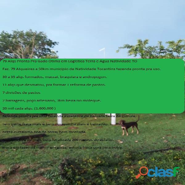 79 alqs pronta pra gado ótima em logistica terra e água natividade to