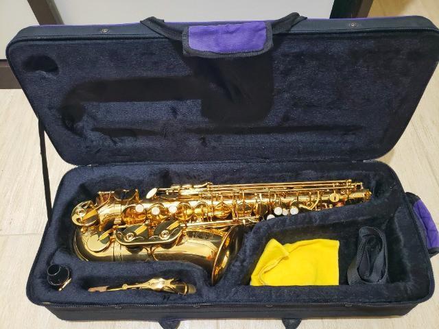 Saxofone alto hofma hsa 400
